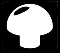 logo_pliz